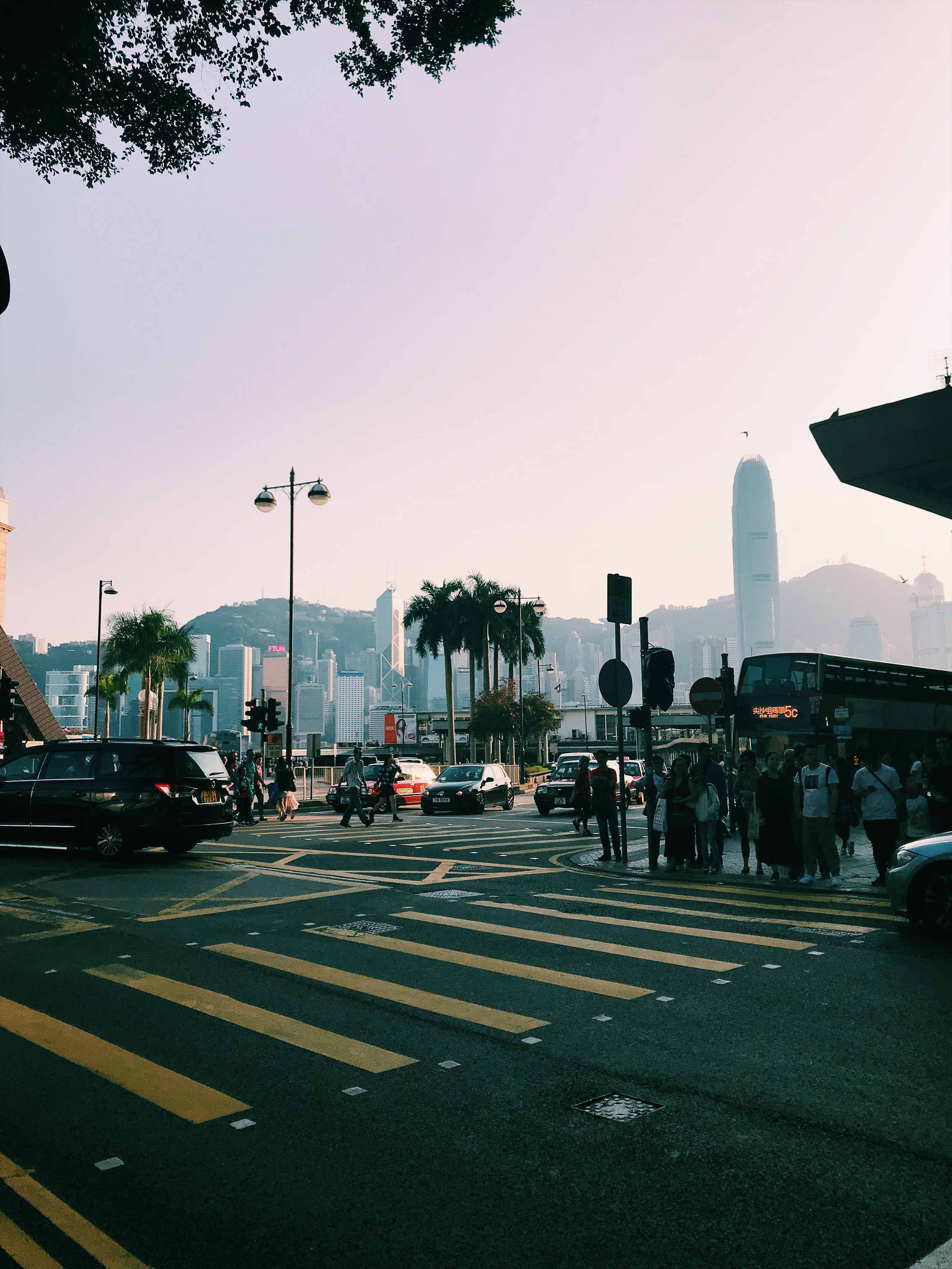 Layover in Hong Kong: Dim Sum, Fabric Shopping and A
